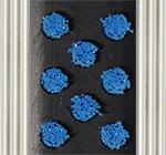B16-Blauw